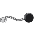 iron chain with shackle vector image vector image