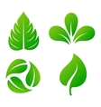 Leaf icon vector image vector image