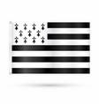 realistic breton flag vector image