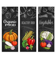 tomato pepper garlic and broccoli vegetables vector image vector image