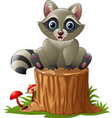 cute raccoon on the tree log vector image vector image