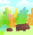 mother boar or pig and little piglet kid cub vector image vector image