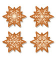 realistic gigngerbread star collection vector image vector image