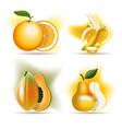 set sweet fruits orange banana papaya and vector image