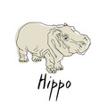 cute hippo cartoon of vector image