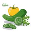 fresh vegetables cucumber lettuce pepper image vector image vector image