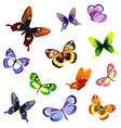 illustration of butterflies of different vector image vector image