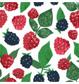 juicy hand drawn raspberry and blackberry seamless vector image