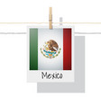 photo of mexico flag vector image