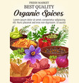 poster of organic spices and herbs vector image vector image