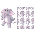 seamless and isolated animal pattern cartoon vector image vector image