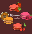 Set of macaroons with fruits vector image