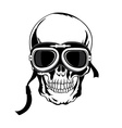 Skull T-shirt design Tatoo art vector image