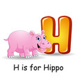 animals alphabet h is for hippo vector image vector image
