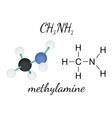 CH3NH2 methylamine molecule vector image vector image