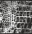 Crocodile skin texture imprint