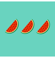 Watermelon slice cut with seed in a row set Flat vector image vector image