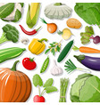 big vegetable isolated icon set vector image vector image
