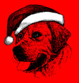dog with santa claus hat hand drawn vector image