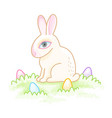 easter bunny sitting vector image