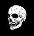 hand drawn human skull on dark background design vector image vector image