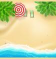 seashore and sandy beach flat lay top view of vector image vector image