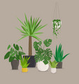 set of green indoor house plants in pots vector image vector image
