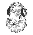 sheep animal in headphones engraving vector image vector image