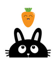 black rabbit bunny face head silhouette looking vector image vector image