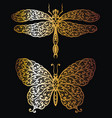 butterfly and dragonfly in gold vector image vector image