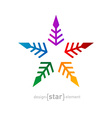 colorful star Abstract design element on white vector image vector image