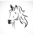 horse head design on a white background wild vector image vector image