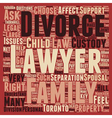 How To Choose A Divorce Lawyer In Toronto text vector image vector image