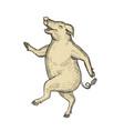 jolly pig dancing drawing retro color vector image vector image