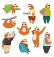laziness sloth animal character different human vector image