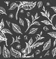 pattern leaf flower black vector image