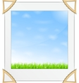 Green Grass and Blue Sky Photo vector image
