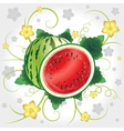 Watermelon whole and slices vector image