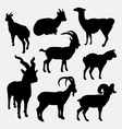 Goat and llama wild animal silhouette vector image