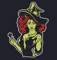 a witch on a dark background vector image vector image