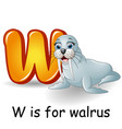 animals alphabet w is for walrus vector image vector image