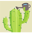 Cactus watering
