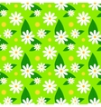 Floral spring pattern with daisies and dandelions vector image vector image