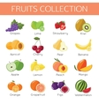 set fruits icons flat style design vector image