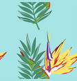 Tropical pattern with leaves vector image