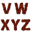 VWXYZ english alphabet letters made of coffee vector image vector image