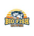 big fish catfish jump with background sun set vector image