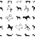Dog breeds pattern icons in black style Big vector image vector image