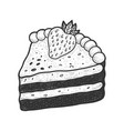 slice strawberry cake sketch vector image