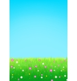 Meadow with flowers background vector image